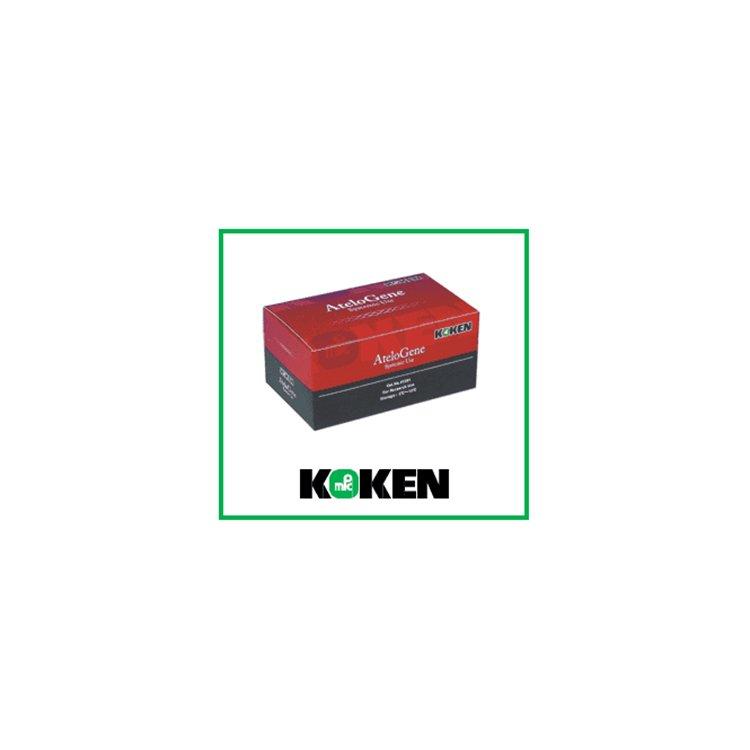 AteloGene Sistemik Kullanım(1 kit)Koken