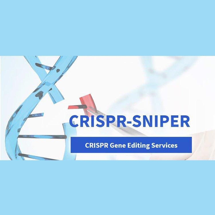 CRISPER Snıper Gen Düzenleme Hizmetleri Bioserve