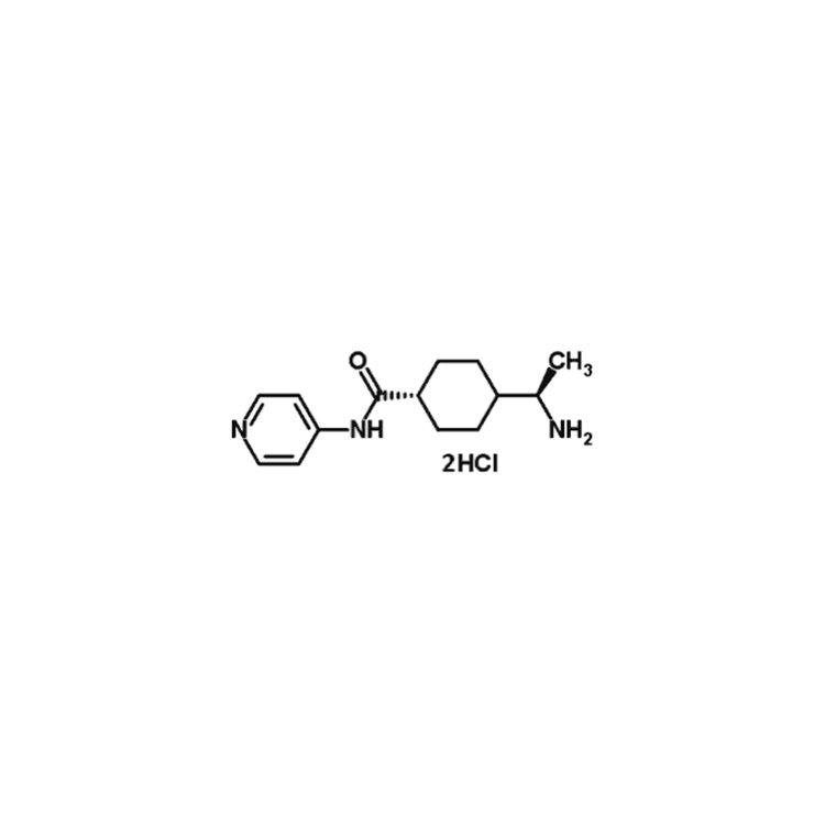 Stemolecule Y27632 Dihydrochloride Hydrate(10mg)Stemgent