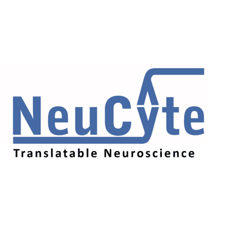 SynFire Complete Media Kit(Small)Neucyte Labs